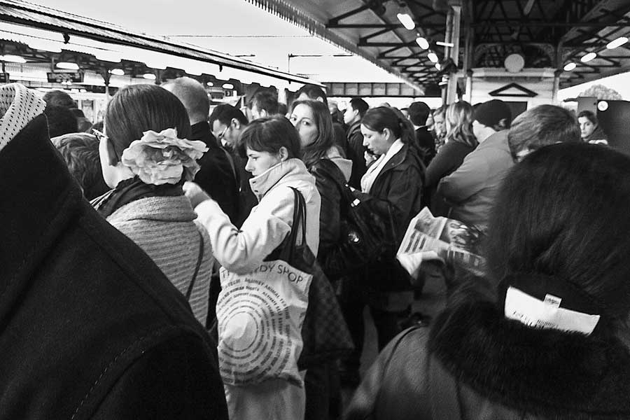 Eyeing up the competition as commuters wait on Overland Platform 1, Clapham Junction.