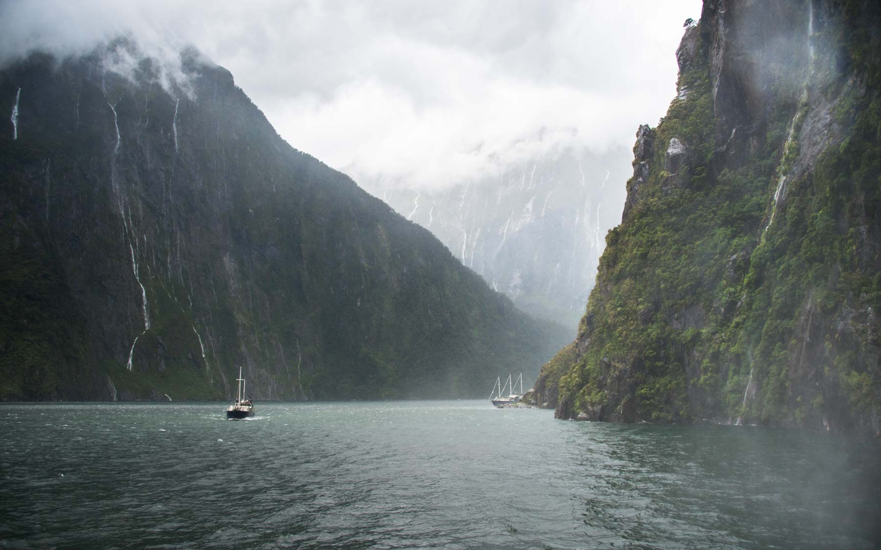 Looking inland through the inner reaches of Milford Sound.