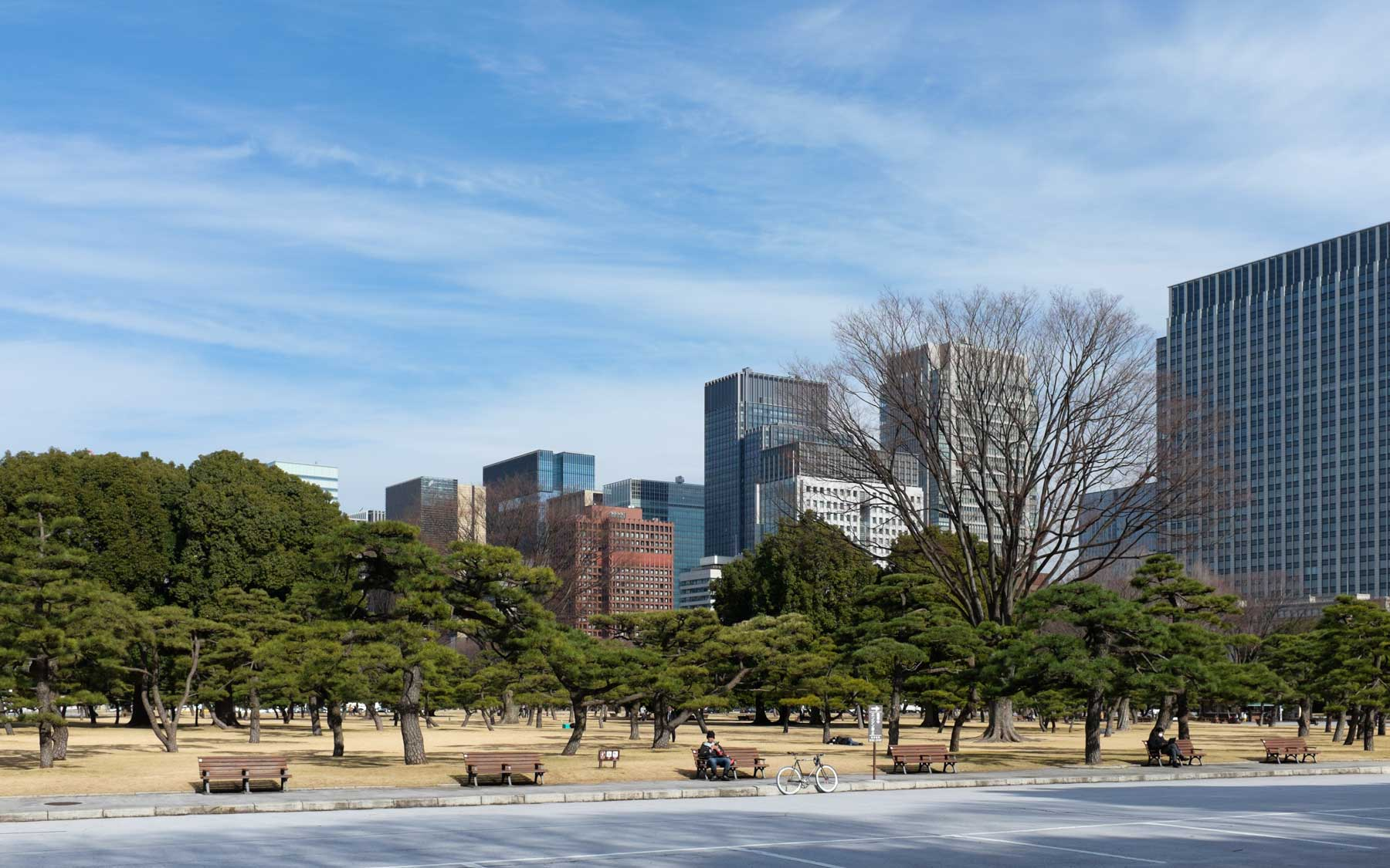 Looking towards Tokyo Station from the grounds in front of the Imperial Palace.